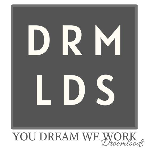 Logo Droomloods You dream we work pr marketing social media en meer